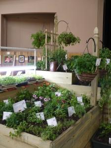 2009-garden-show-021