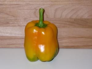 Multi-Colored Pepper