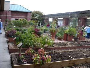 Emptier Garden