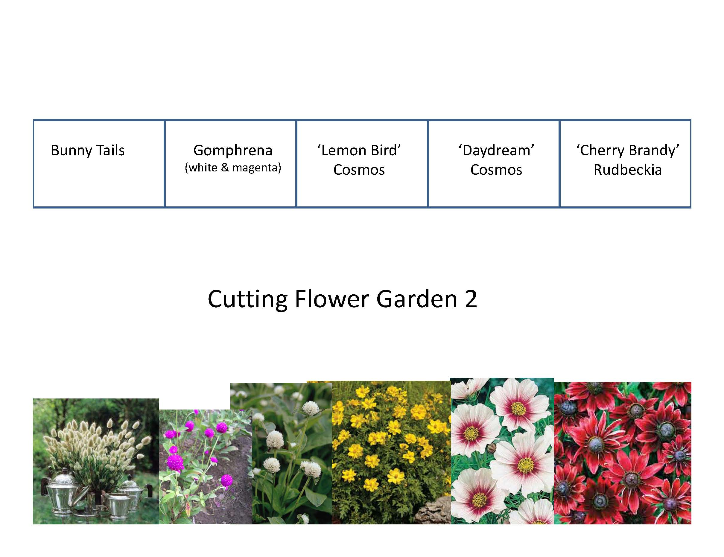 Flower Garden Planner Of Top 28 Cutting Garden Plans Demo Garden 2010 Plans