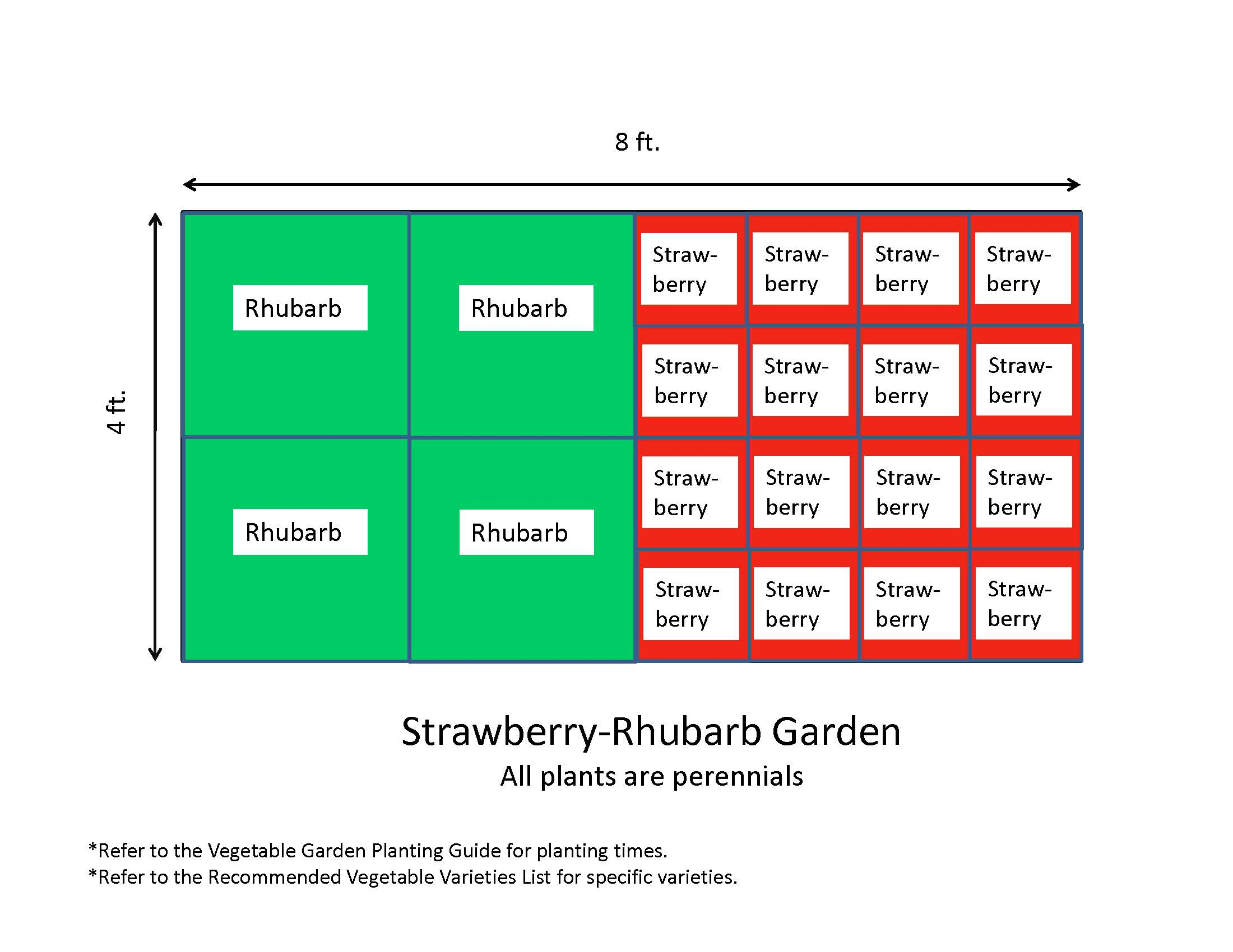 Raised vegetable garden layout 4x8 - If