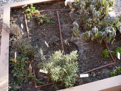 一个月的花园