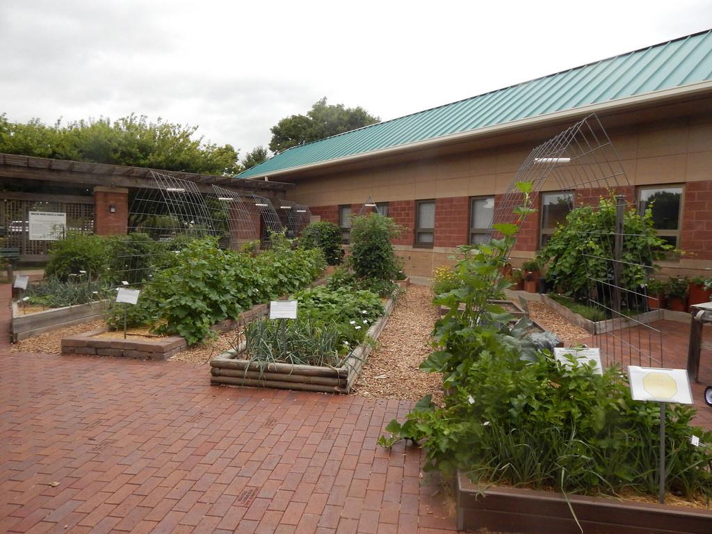 vertical garden | The Demo Garden Blog
