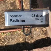radish label