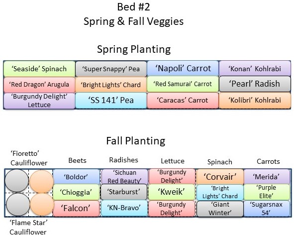 Spring and Fall Veggies - Bed 2